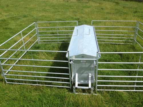 lamb is creep and of sale making sheep crows very it include this to lambs feeder crow hoggets from mealfeeders feeding a strong for feeders we sheeted steal stop guard made also